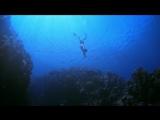 IMAX.Ocean.Men.Extreme.Dive.2001.Bluray.1080p.DTS.x264-CHD