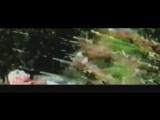 Блек Метал - док. фильм. Black Metal - Documentary (rus)