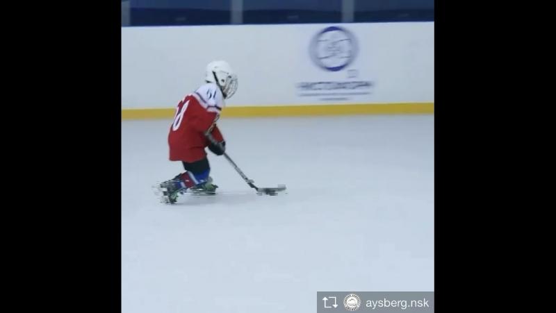 Богдан хоккеист5 летбабушкина гордость