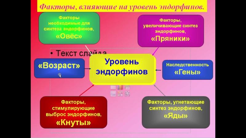 Эндорфинотерапия