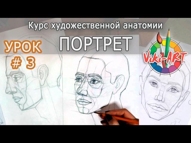 Как нарисовать портрет: ПОЛНЫЙ РАЗБОР! Урок 3: Поворот 3/4. Пропорции лица. Рисуем вместе с Viki-ART