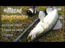 Весенняя ловля судака на джиг с берега на реке - После запрета