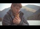 Путешествие Алтайского котенка Чемал в Новосибирск Приют для животных Дари добро
