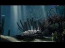 Кембрийское море ЭПЗ1_Educational movie is used on batrachos