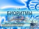 Биоритмы Человека | Bioritmy Cheloveka