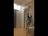 +ultra high jump(higher than Michael Jordan)
