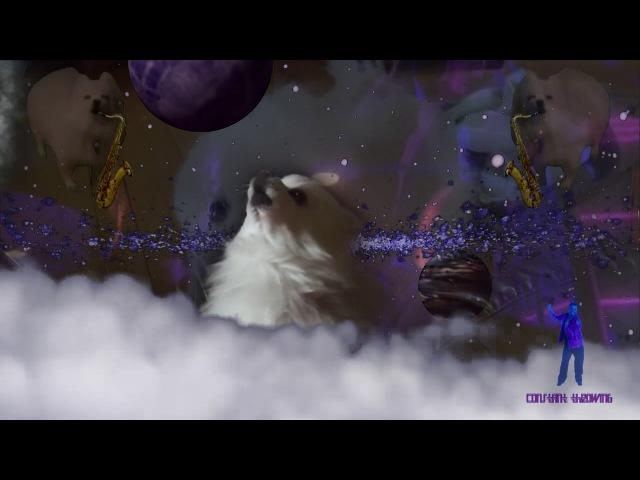 Bork Raiders - Howling Star