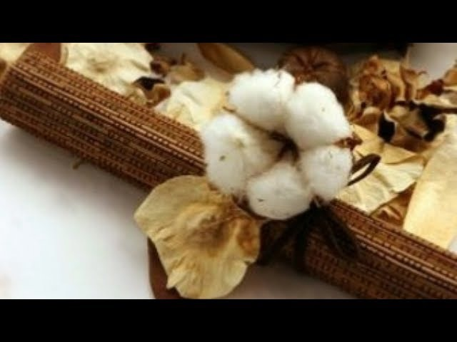 DYI How to make cotton flower by crepe paper Làm hoa cotton bằng giấy nhún