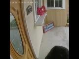 Собака Напала На Почтальона