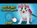 Наши котята КОШКА МУРКА И ШКОЛА КОТОВ Челлендж котенка мультики про котят Bad baby ...