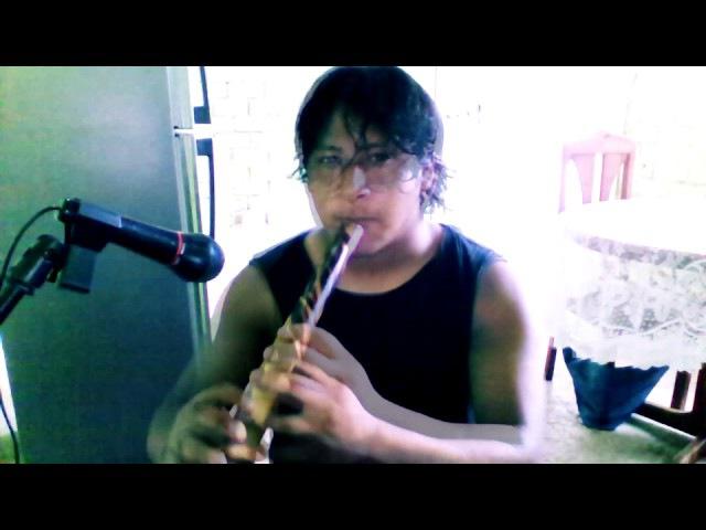 MUSICA ANDINA - EL INDIO IRLANDES - jean atauje (quena)