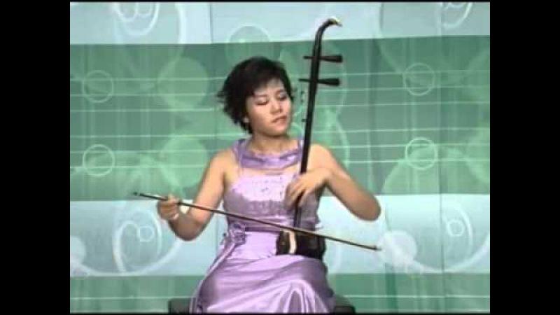 Sarasate - Carmen Fantasy 卡门主题幻想曲 Erhu(二胡)- Sun Huang 孙凰