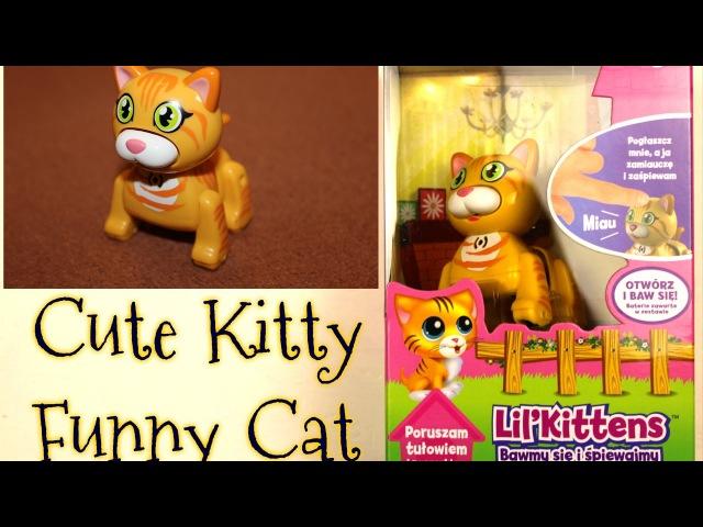 Cute kitten Cute kitty Котенок Хелло Китти