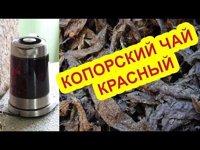 Красный копорский чай 🌺 или