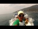 Морские прогулки с дельфинами на скоростном катере Багратион с Фёдором Косых В Абхазии Гагра