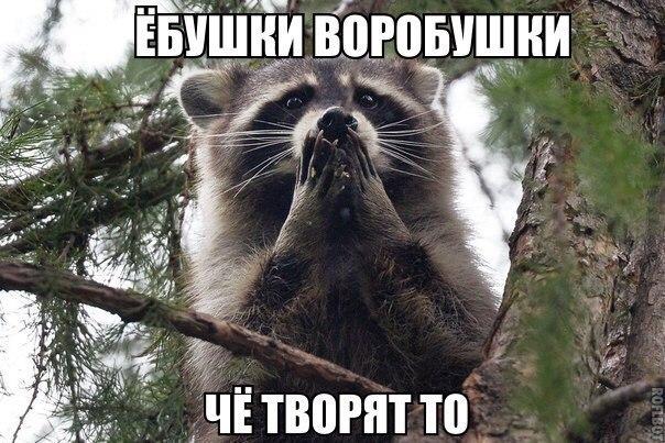 """Енин: Из-за реформы судебной системы """"дело Януковича"""" могут рассматривать сначала - Цензор.НЕТ 7843"""