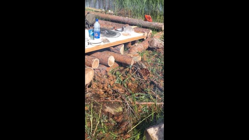 Начало строительства избы на оз Токовом