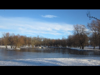 Гатчина 20.01.17 На Белом озере.