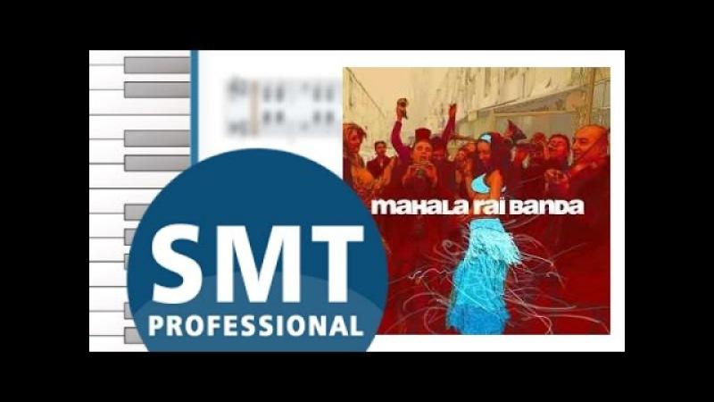 Как играть на аккордеоне Mahalageasca | How to play on accordion | SMT Pro
