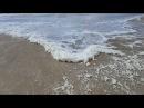 Анапа. Погода. 1.03.2018 ШТОРМ. Пляж Юнга