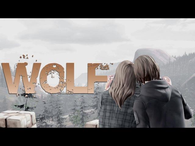 Chloe Rachel || Wolf