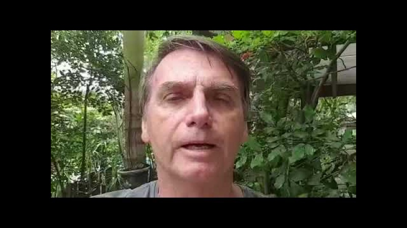 - Do ornitorrinco o combate à superbactérias (fato). - Da Amazônia o bem da humanidade (projeto).