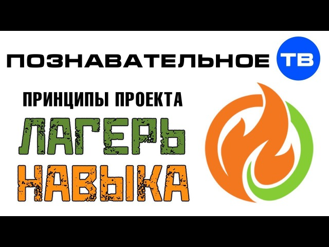 Что такое Лагерь Навыка (Познавательное ТВ, Кирилл Лебедев)