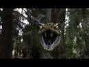 Титанобоа (Titanoboa cerrejonensis) - гигантская прабабушка современного удава