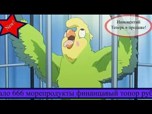Папугай Иннокентий.