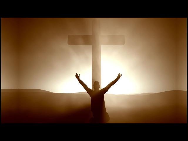 Gib niemals auf ➤ Das Wort Gottes gibt uns Kraft