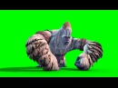 Green Screen Monster Yeti Bigfoot Walk Attack Die - Footage PixelBoom