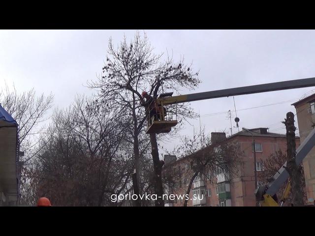 Обрезка крон деревьев в Горловке