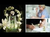 Редкий талант как парфюмеры создают ароматы