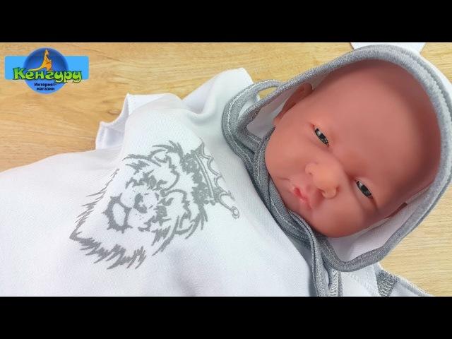 Набор для новорожденных ЛЬВЯТ Leo