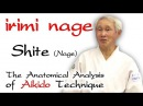 Irimi Nage How does Shite Nage move. The Anatomical Analysis of Aikido Technique