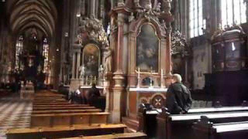 Вена (Австрия) - в костеле (Vienna (Austria) - in the church)
