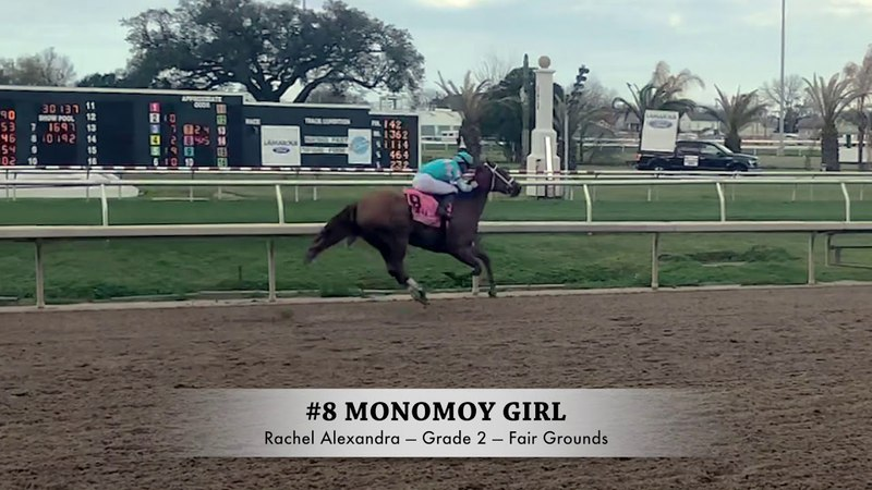 Maggie Caught Up with Trainer Brad Cox After Monomoy Girl's Rachel Alexandra