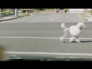 Subaru Dog Tested - Subaru Commercial - In the Dog House
