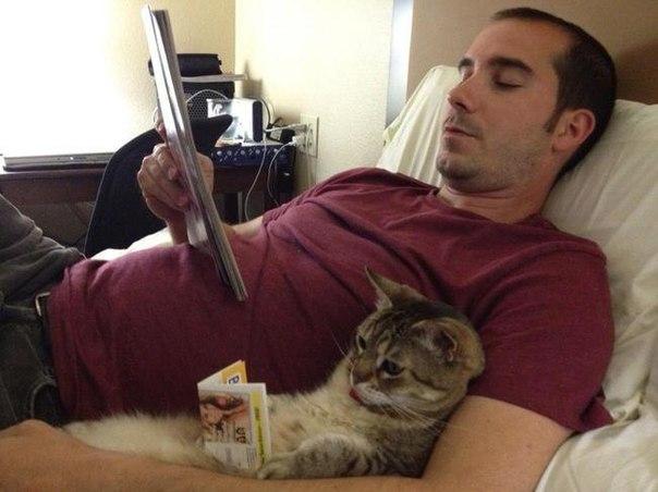 Когда вы с котиком на одной волне