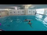 Дельфин Лира, Москвариум, центр плавания с дельфинами, 26.01.17.