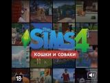 The Sims 4 Кошки и собаки — пройди тест