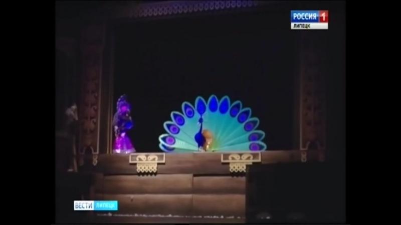 Вести-Липецк театр кукол