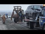 На трассе М-7 в Татарстане Lexus насмерть сбил лошадь vk.com/vkazani