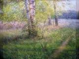 Деревенька моя( художник Д.Левин и др.)