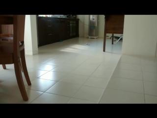 Незваный гость (VHS Video)