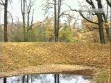 Ян Френкель Жёлтые листья