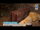 У найстаріших катакомбах Одеси на Буніна 7 відкрили музей