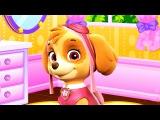 Paw Patrol Skye Facial Spa Fun Videos For Kids.