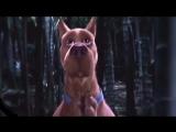 Katherine Pierce & Scooby Doo