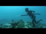 Сверхчеловек: филиппинский ныряльщик охотится 5 минут на глубине 20 метров только с очками